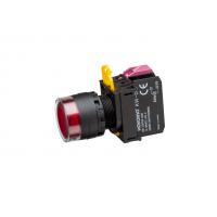 Ø22/25mm Illuminated Push Button Flush